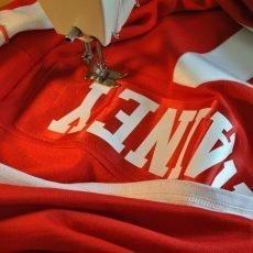 Detroit Red Wings Hockey Jerseys